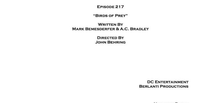 """Arrow: Episode #2.17 Is """"Birds Of Prey"""""""