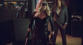 "Arrow: 22 Official Images From ""Birds Of Prey"""