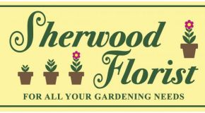 Sherwood Florist Coming To Arrow Season 3