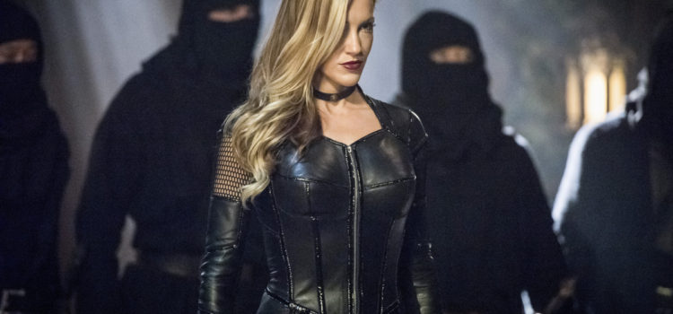 Arrow's Marc Guggenheim Talks Black Siren