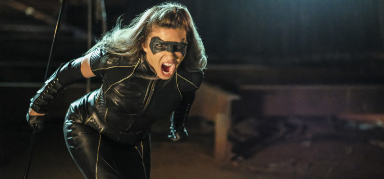 "Arrow ""Tribute"" Overnight Ratings Report"